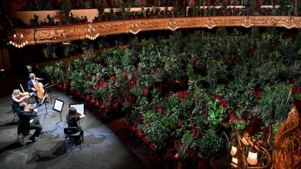 A Barcellona un concerto con 4 archi e 2.292 piante