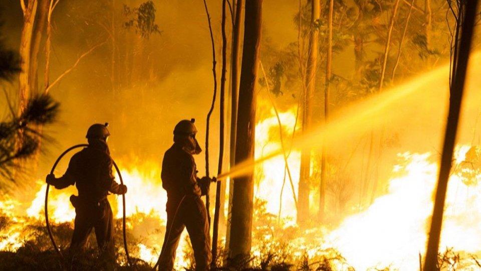 La Protezione Civile Rsm sulla prevenzione Incendi Boschivi 2020