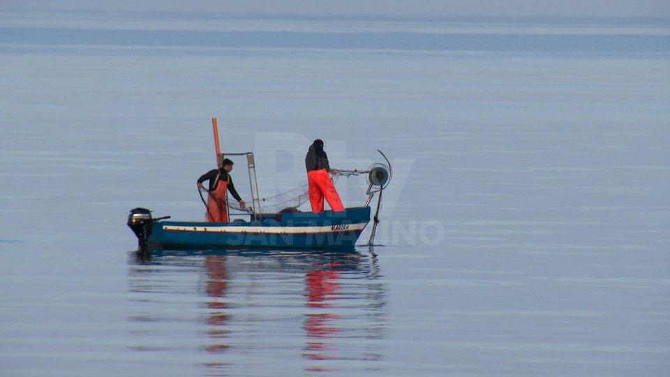 Al via oggi il fermo pesca. L'attività riprenderà il 6 settembre
