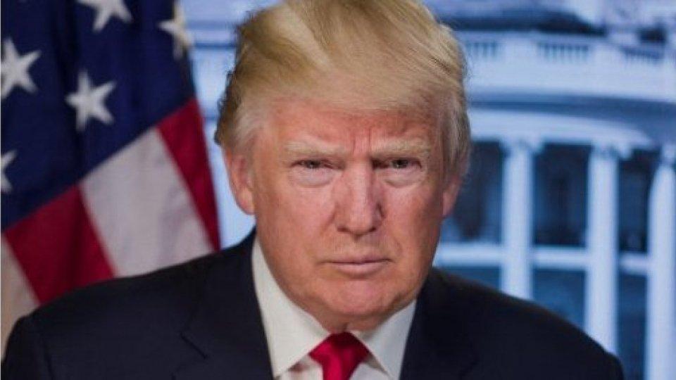 Donald Trump (@freesvg)