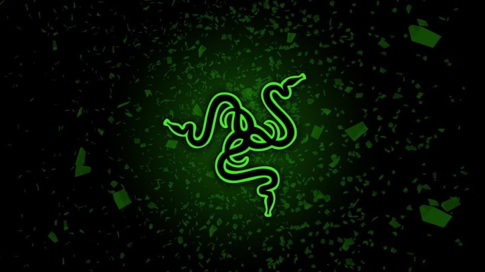 "Sei un gamer, lo dice la tua ""Virtual Razer Card"""