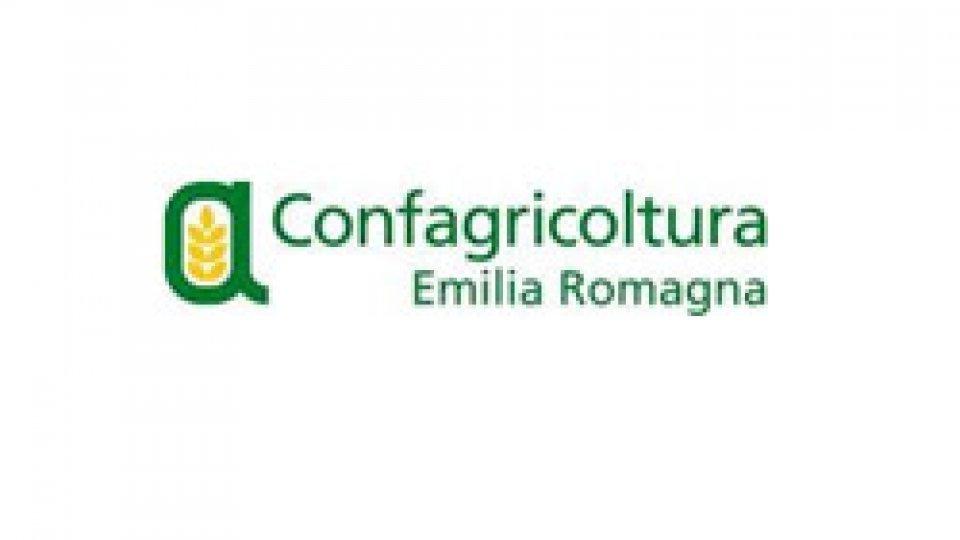 Confagricoltura E.Romagna: «In crisi 10.000 aziende del comparto vino dell'Emilia-Romagna: una perdita complessiva di fatturato pari a 8 milioni di euro