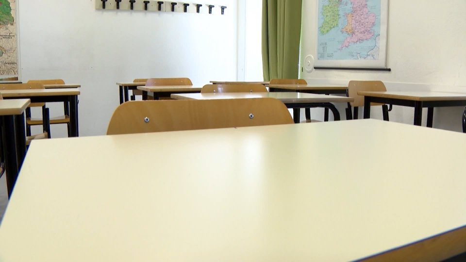 """""""Appello alla Cittadinanza"""" del Comitato Genitori per la Scuola in Presenza"""
