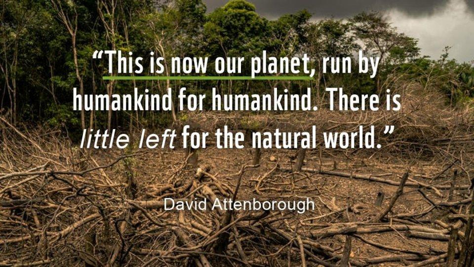 Foto: @Luis Barreto / WWF-UK