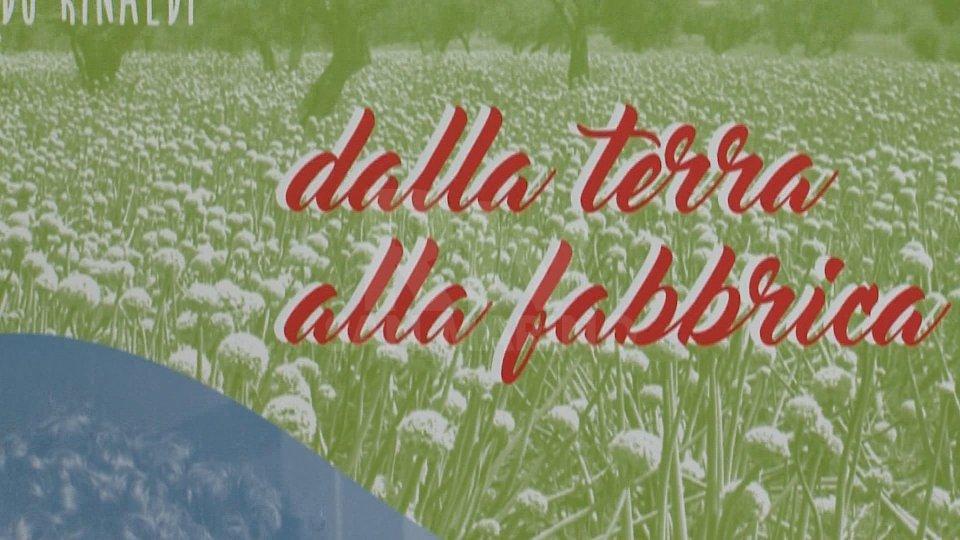 """""""Dalla terra alla Fabbrica"""": ecco il calendario 2021 che la coppia Ugolini-Rinaldi ha dedicato a San Marino"""