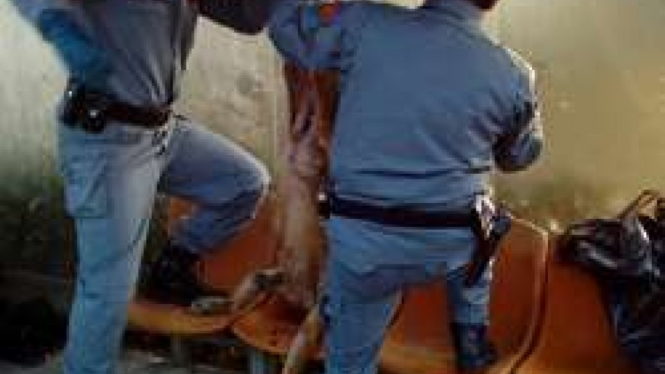 Intervista al Comandante dei Carabinieri Aldo TerziCoriano: Cc scoprono autori del massacro di un lupo ritrovato appeso alla fermata dell'autobus
