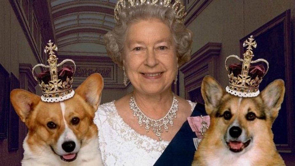 Sua Maestà ha scelto i nomi dei due nuovi cuccioli
