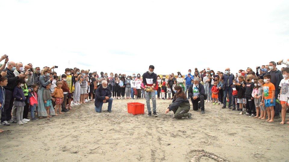 Una targa di riconoscimento a Massimo Rossi: il pescatore che salva le tartarughe