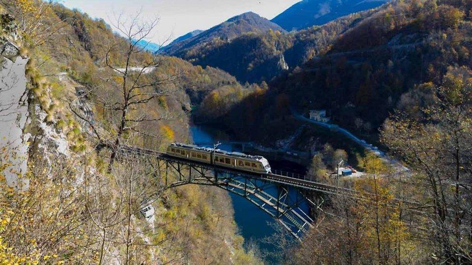 Il treno tra i colori dell'autunno