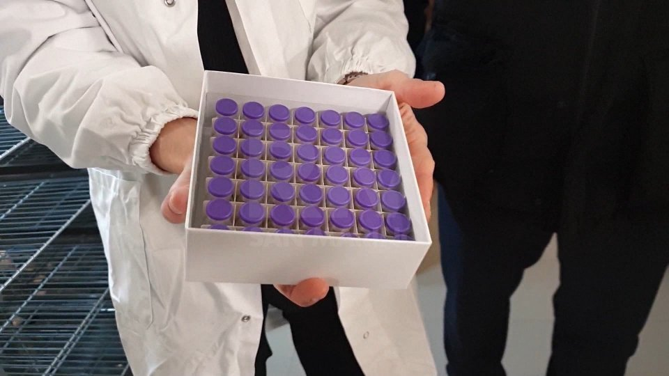 Vaccino anti Covid: in Emilia Romagna al via le somministrazioni in farmacia