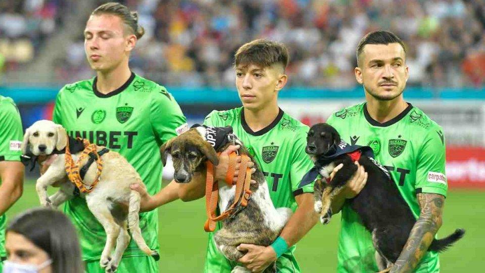 Il Calcio da adottare