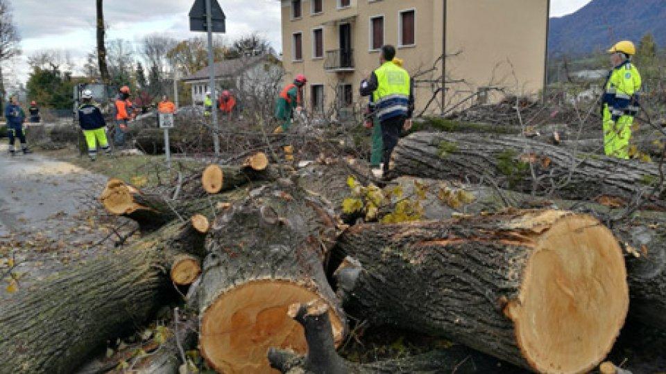Emergenza nel bellunese, l'Emilia-Romagna si mobilita