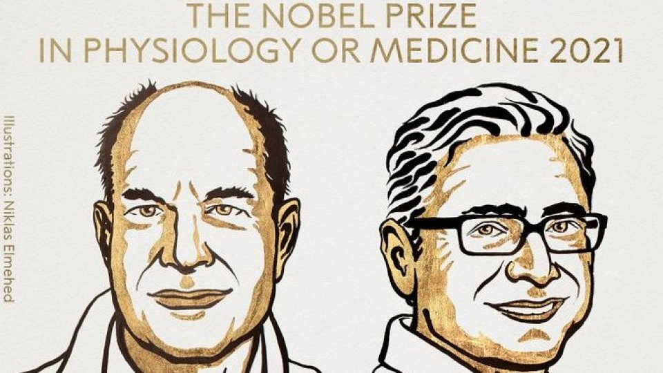 Nobel Medicina a Julius e Patapoutian