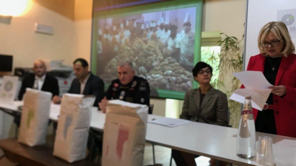 Consorzio Terra di San Marino: Presentato il progetto di valorizzazione della filiera dei cereali coltivati in territorio