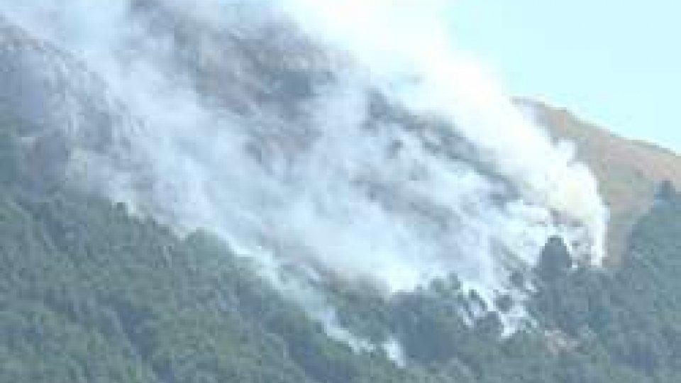 Incendi boschivi: in Italia triplicati gli ettari in fumo, a San Marino nessun evento graveIncendi boschivi: in Italia triplicati gli ettari in fumo, a San Marino nessun evento grave