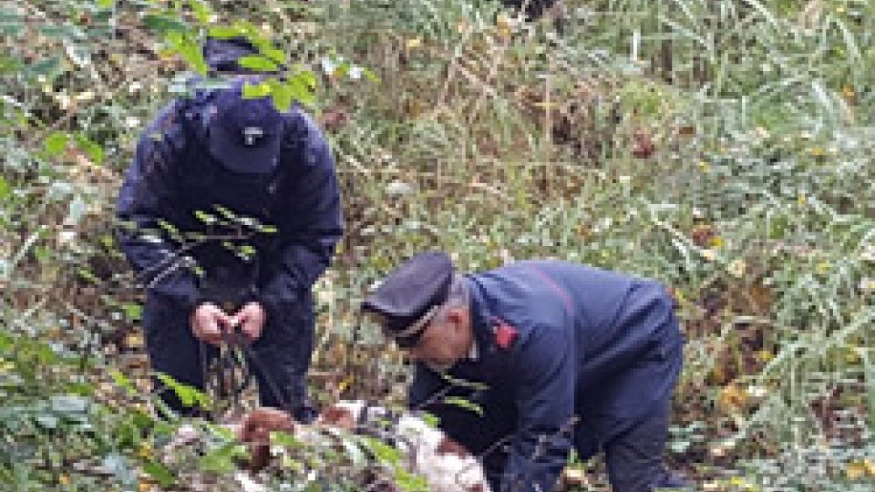 I cani presi dai carabinieriTrovato senza vita il corpo senza vita del cacciatore di San Michele