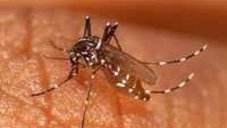 Usl Rimini: diagnosticato un caso di Chikungunya a 68enne
