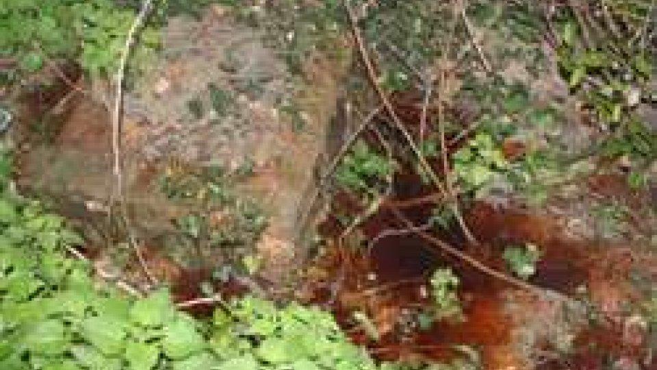 acque rosse (foto Polizia Civile)Fiorentino: il Capitano Giannoni segnala acque rosse a Fonte Aquino