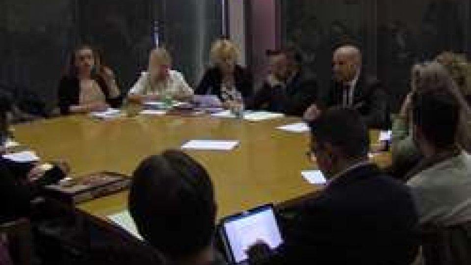 Inclusione lavorativa, Commissione Cds ONU chiede confronto verso il decreto attuativo