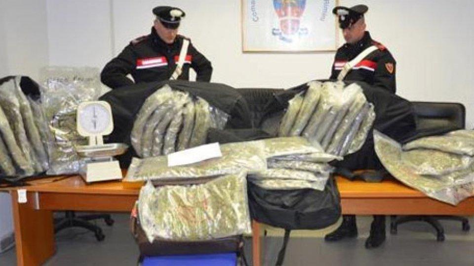 La droga trovata dai Carabinieri