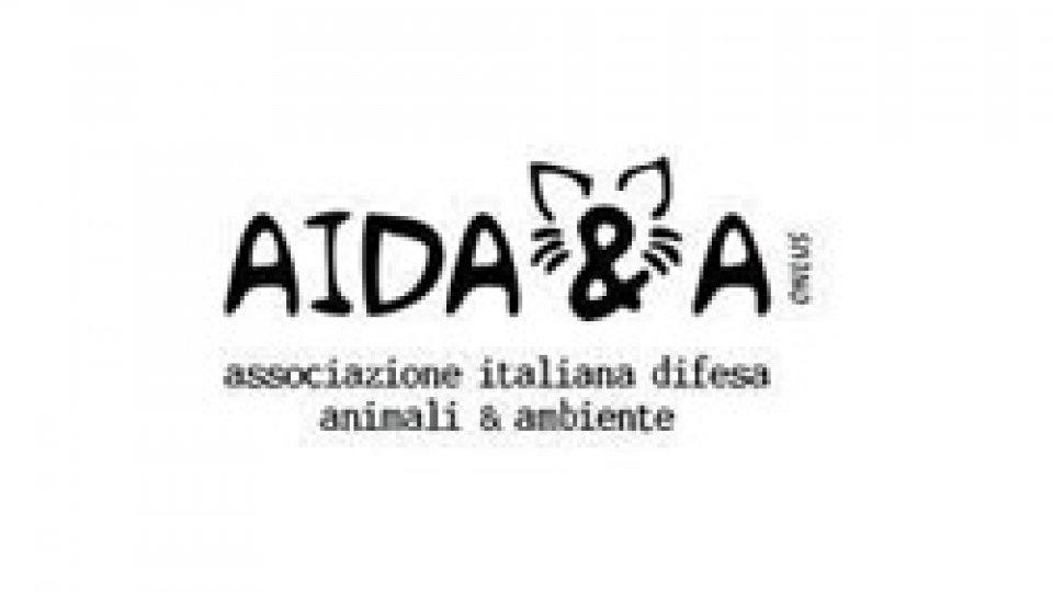 AIDAA a San Marino: arrestate il prete che istiga alla zoorestia (articolo 282 bis c.p.)