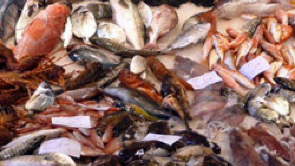 Controlli in ristoranti etnici: sequestrati 40 kg di pesce