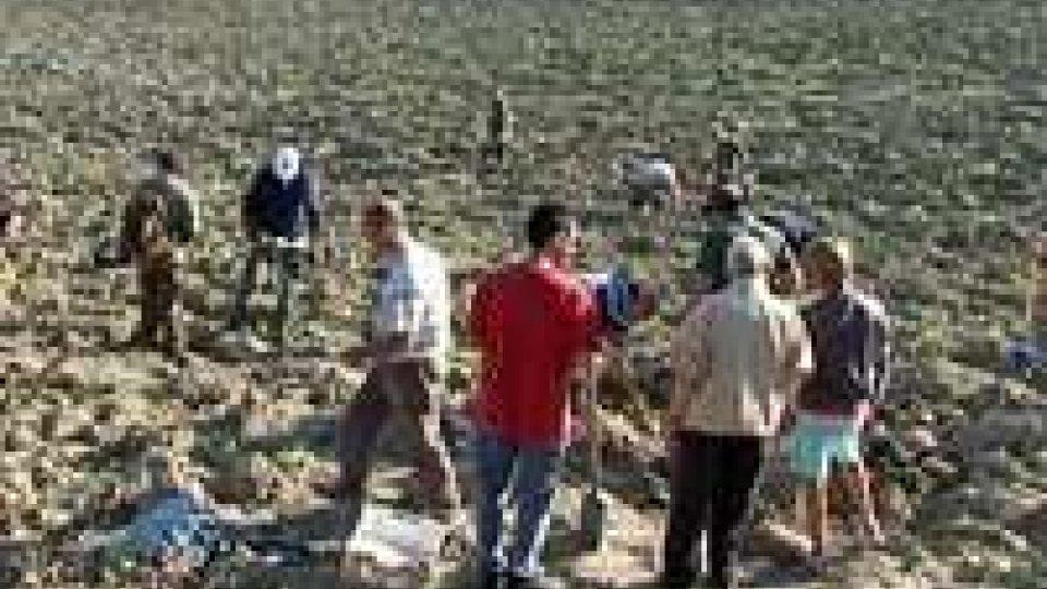 Nelle campagne di Santa Cristina ritrovati i resti di un aereo del secondo conflitto mondialeNelle campagne di Santa Cristina ritrovati i resti di un aereo del secondo conflitto mondiale