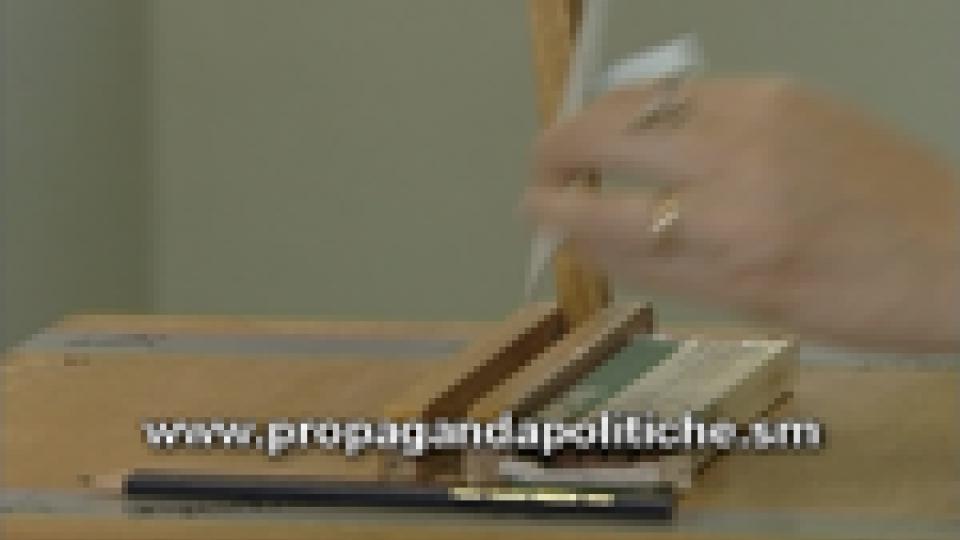 Il sito della campagna elettorale