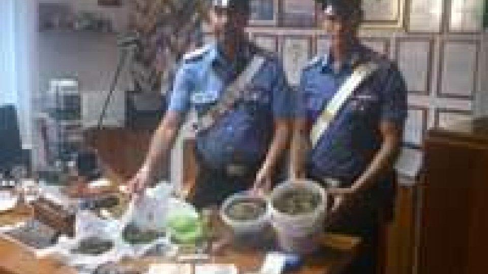 Sequestrato 1 kg di marijuana a Misano. Sei arresti davanti a discoteca Riccione