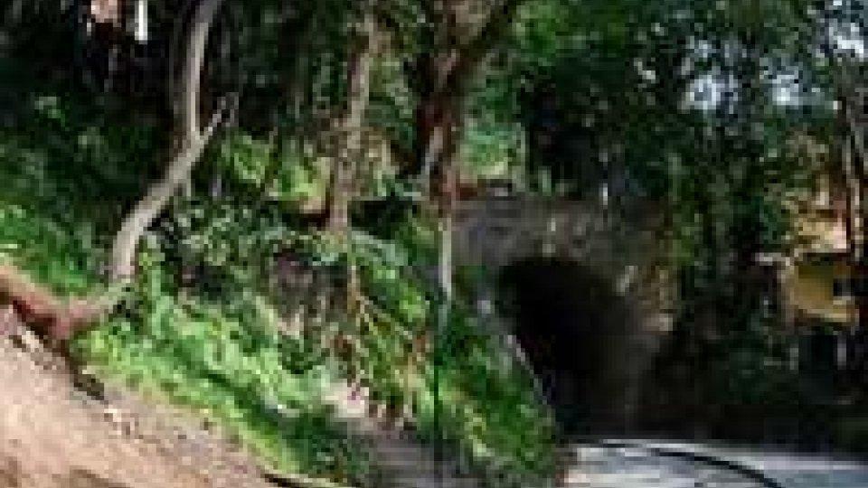 Segreteria al Territorio risponde a Rete su appalti 'verdi'