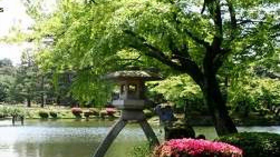 Viaggi: Kyoto tra templi e giardini