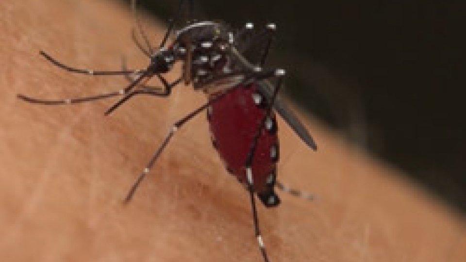 A San Marino nessuna traccia del virus trasmesso dalle zanzareAllerta West Nile: a San Marino nessuna traccia della malattia, situazione sotto controllo