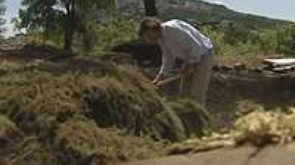 Conclusi i sondaggi archeologici a MontecerretoConclusi i sondaggi archeologici a Montecerreto