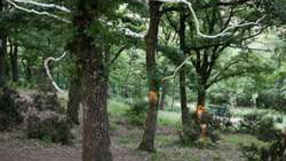 Bologna: cadavere in parco, probabile overdose. E' un riminese di 45 anni