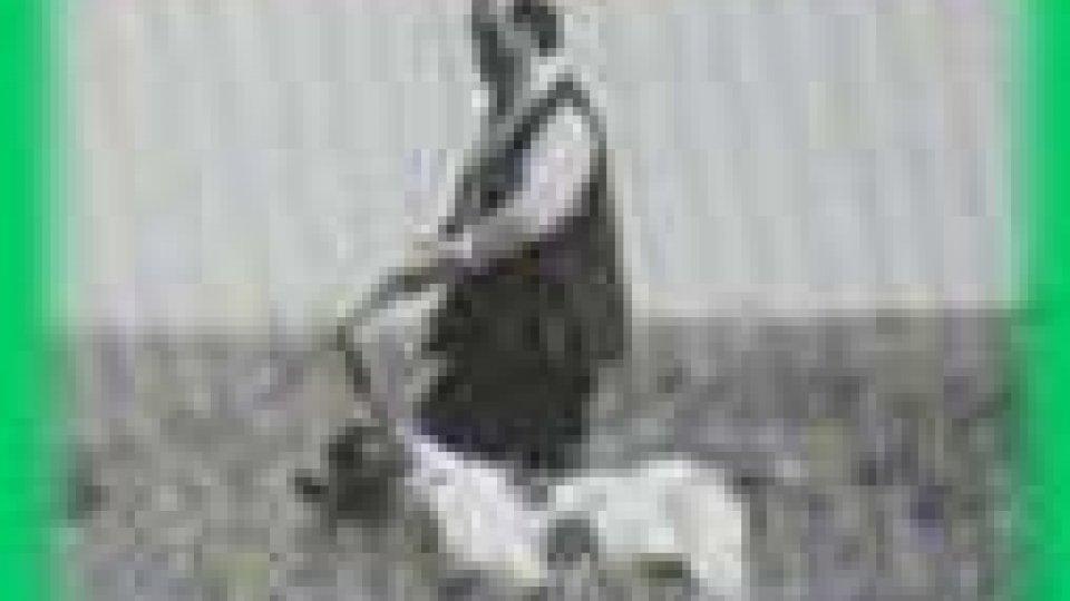 Uccellini dopati: la denuncia dell'APAS