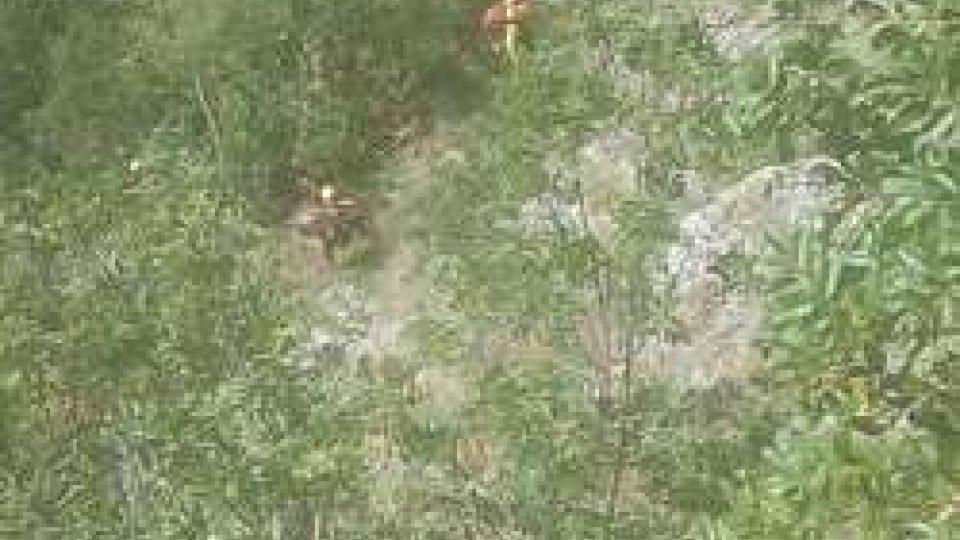 Albergatore di Bellaria trovato morto in un dirupo a Poggio Torriana