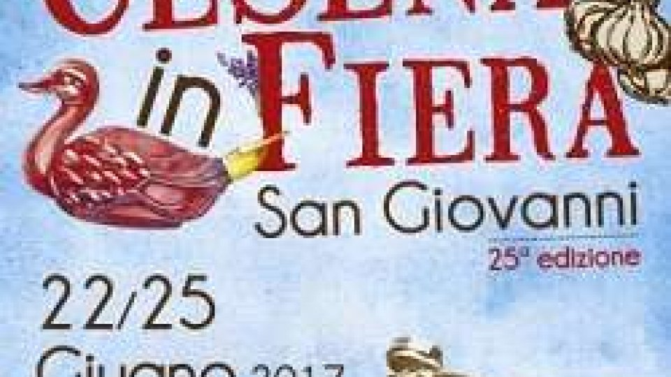 Estate, la XXV edizione di Cesena in Fiera