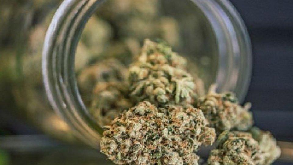 Gendarmeria: pizzicato sammarinese con 35 grammi di marijuana