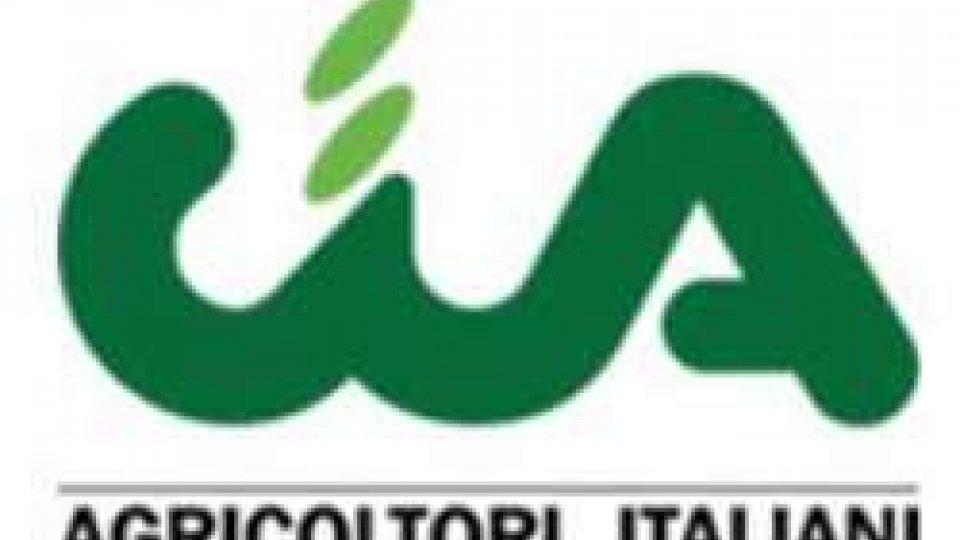 L'Associazione dei giovani agricoltori (Agia) di Cia Romagna ha il nuovo coordinatore: Matteo Pagliarani