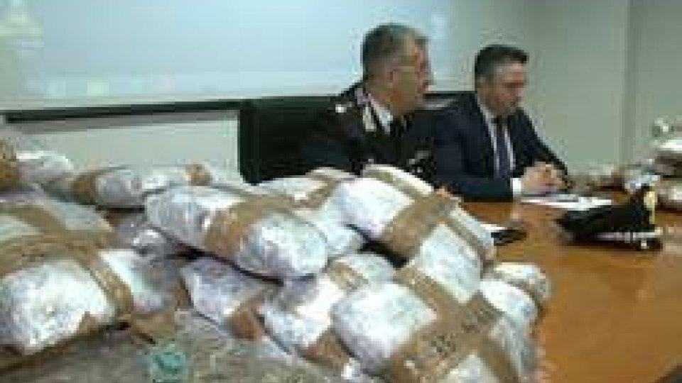 Rimini, in auto con 65 kg di marjuana. Arrestato dai carabinieri