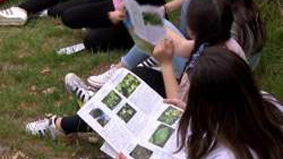 la simulazione dei ragazziGiornata Europea Parchi: ad Acquaviva simulazione antincendio con gli studenti a tutela dell'ambiente