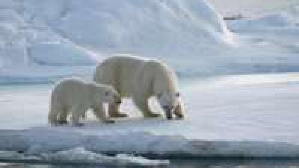 Dal cambiamento climatico rischi per le forniture alimentari