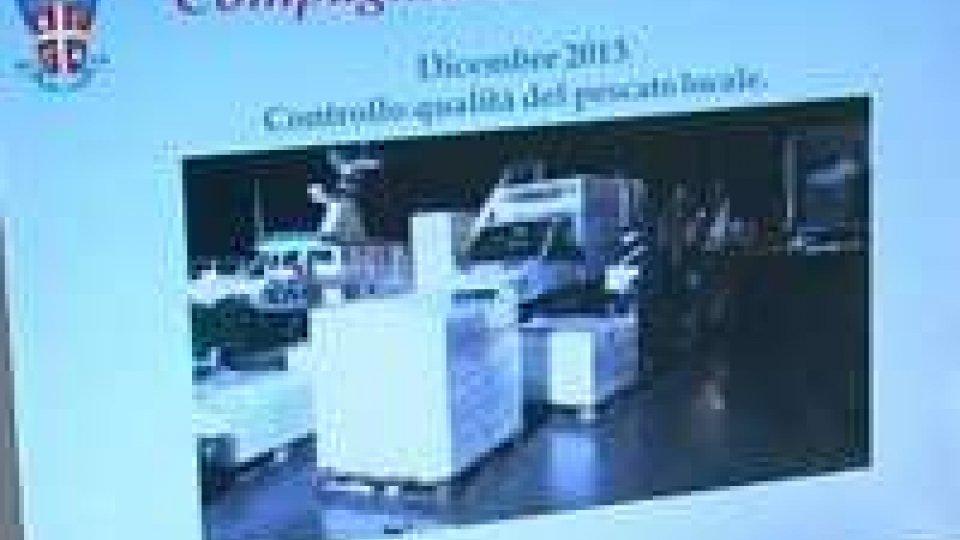 Maxi sequestro al Porto di Rimini: 1.500 kg di pesce azzurro alteratoMaxi sequestro al Porto di Rimini: 1.500 kg di pesce azzurro alterato