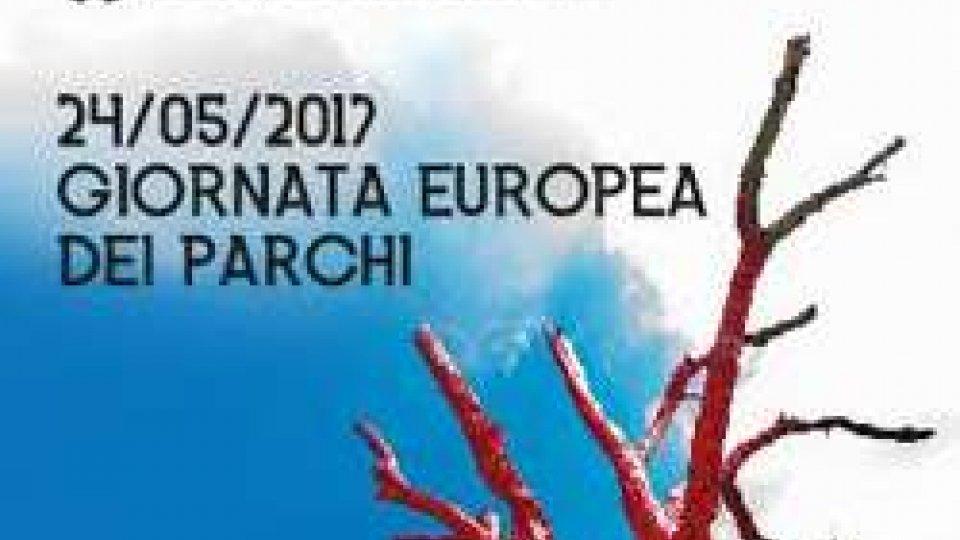 Giornata Europea dei Parchi: Michelotti a Monte Cerreto per la presentazione dell'opera di Gabriele Gambuti