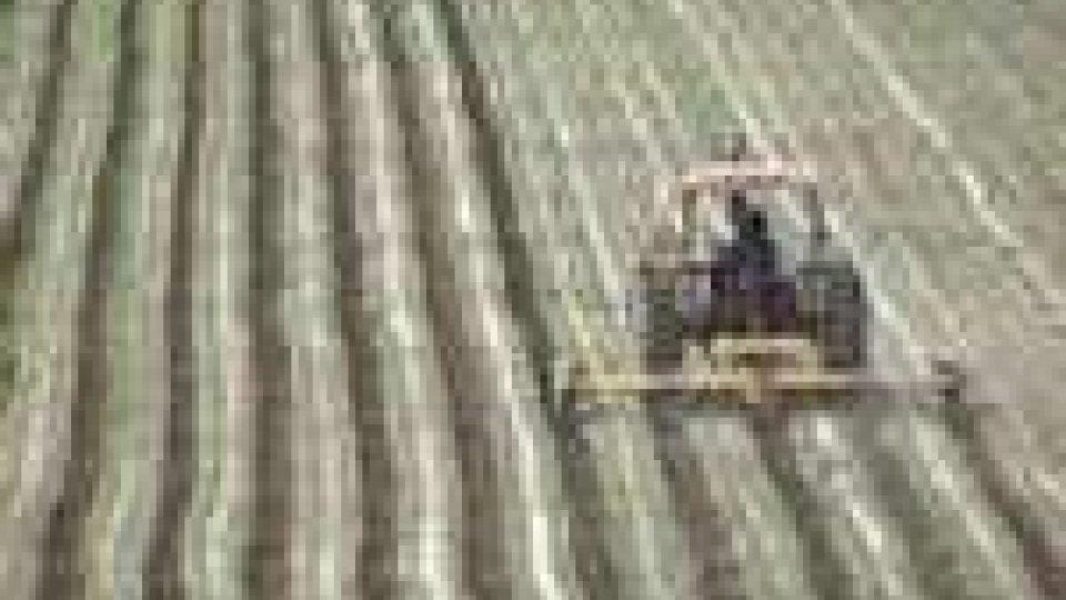 Schiacciato dal trattore: grave un sessantenne