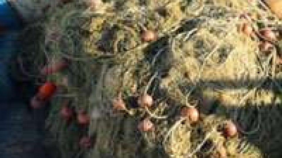 Marecchia, reti da pesca abusiva trovate dai carabinieri di Rimini