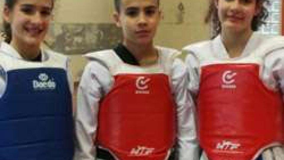 Taekwondo: III° Stage di combattimento a Budrio