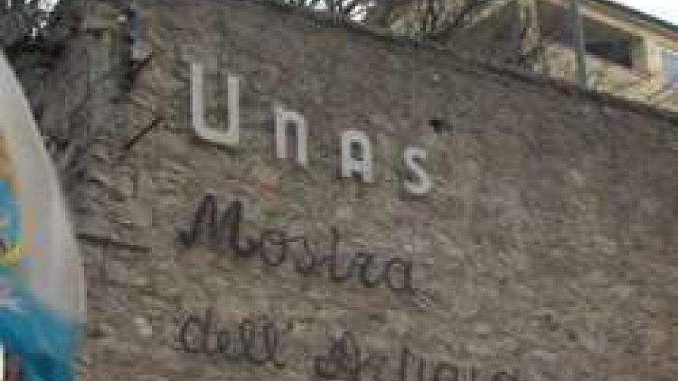 UNAS - Codici ATECO: Serve una proroga di sei mesi