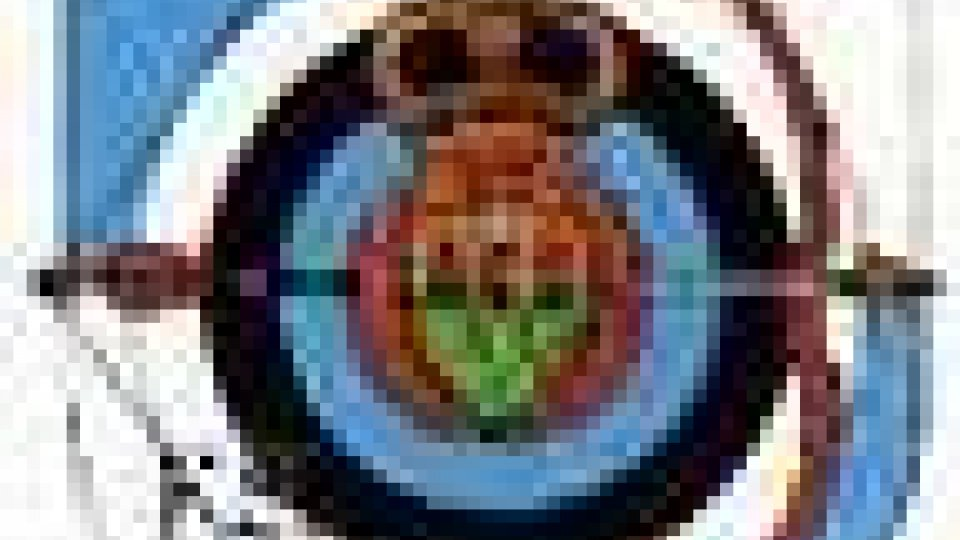 170 arcieri in gara a Montegiardino