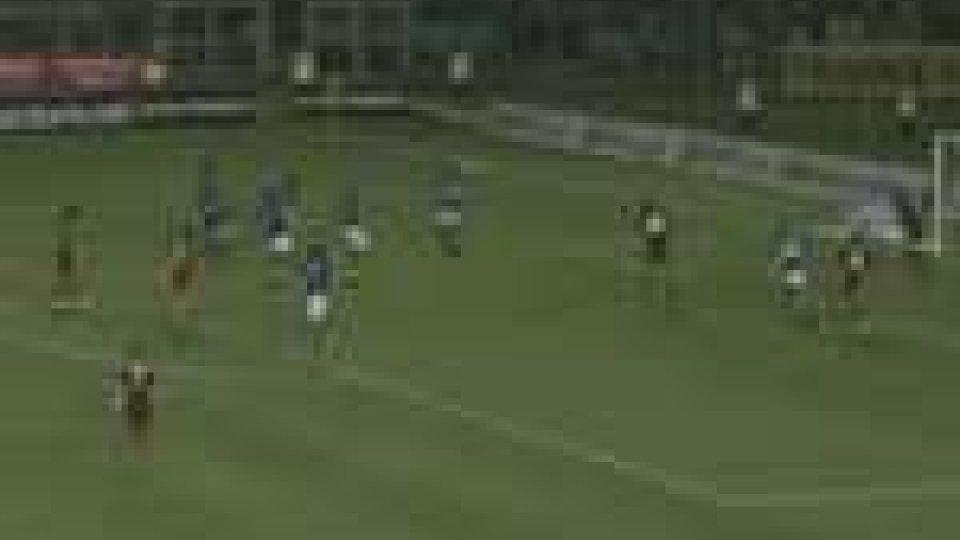 Il Brescia batte il Torino e torna in serie A
